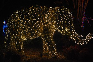 National Zoo Lighted Elephant