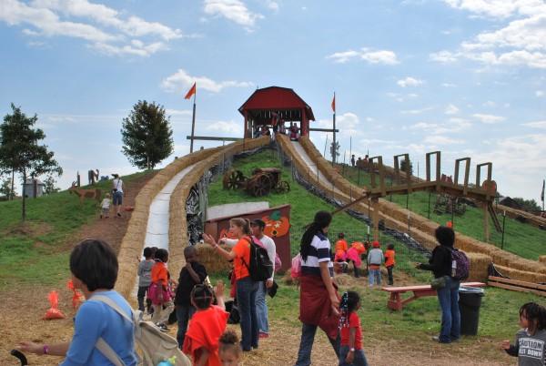 Cox Farm Fall Festival